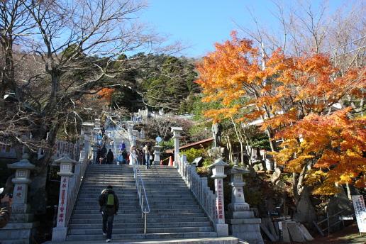 神奈川の風景-大山10.JPG