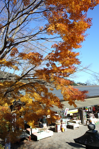 神奈川の風景-大山12.JPG