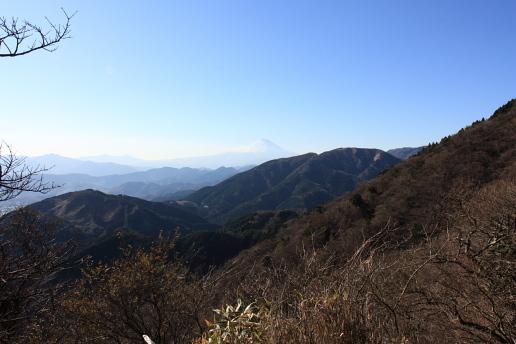 神奈川の風景-大山17.JPG