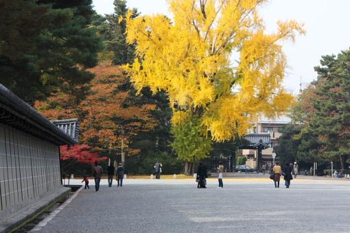 kyotogyoen_0002.JPG