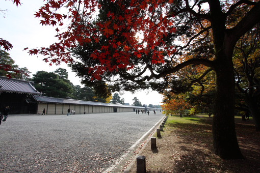 kyotogyoen_0005.JPG